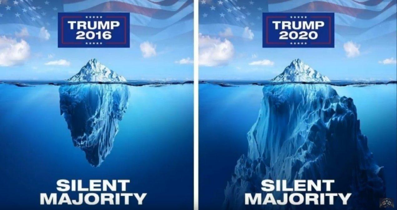 QAnon 17 June 2020 - Silent Majority